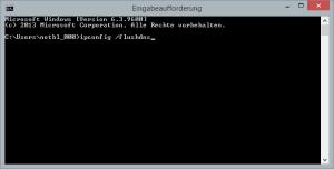 Windows DNS-Cache leeren