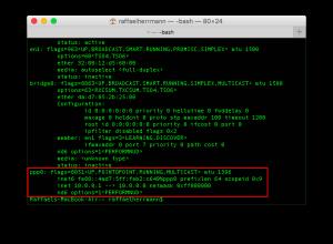 Zugriff auf externe IPs im VPN in Mac OSX (2)
