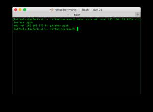 Zugriff auf externe IPs im VPN in Mac OSX (4)