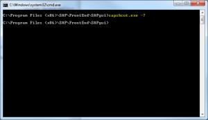 sapshcut.exe - help from cmd