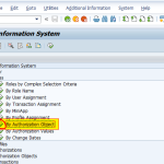 Search for SAP role which contains special authorization object